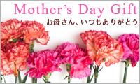 母の日ギフト / mother's day