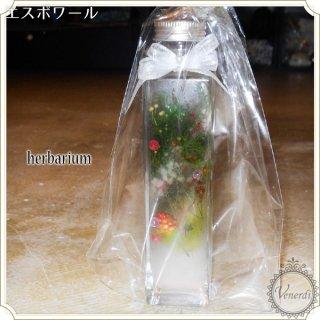 【限定品】ハーバリウム X'mas