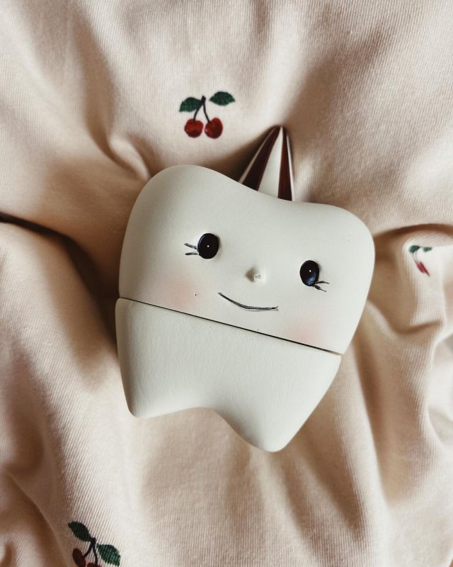 <img class='new_mark_img1' src='https://img.shop-pro.jp/img/new/icons56.gif' style='border:none;display:inline;margin:0px;padding:0px;width:auto;' /> konges solid TOOTH BOX