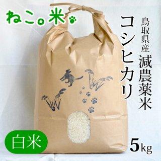 コシヒカリ白米5kg