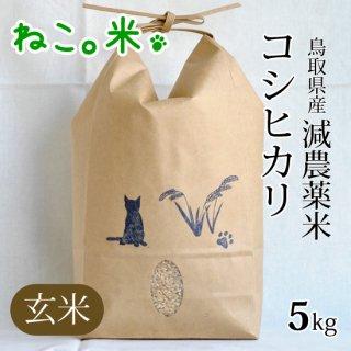 コシヒカリ玄米5kg