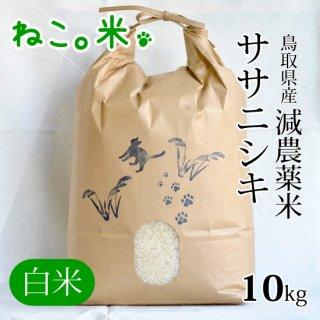 ササニシキ白米10kg