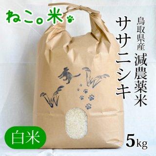 ササニシキ白米5kg