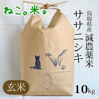 ササニシキ玄米10kg