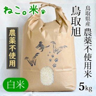 鳥取旭白米5kg
