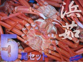 名人の「浜茹で蟹」Lサイズ-5尾入り