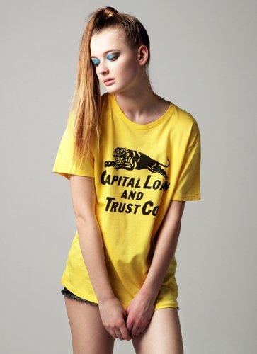 CAPITAL LOAN AND TRUST CO.  TEE