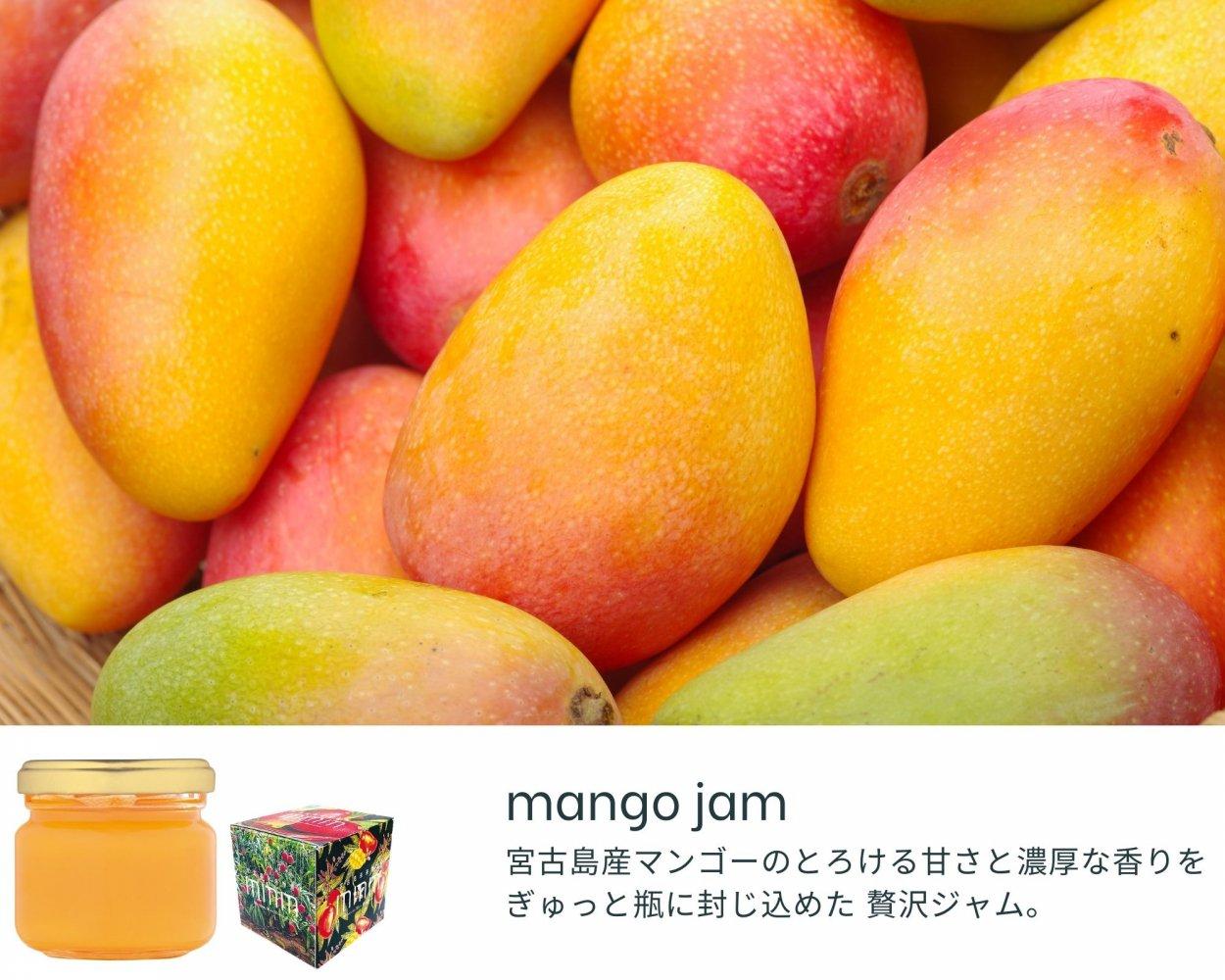 宮古島マンゴーの贅沢ジャム