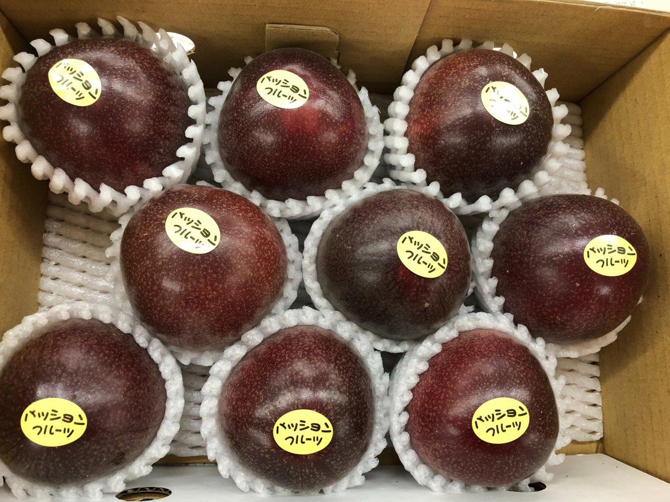 【贈答用】 無農薬栽培パッションフルーツ1kg(クッション付き)