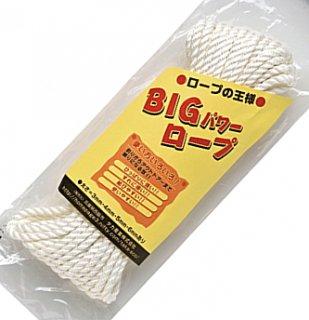 タカ産業 BIG パワーロープ #3mm×10m (O01) 【本店特別価格】