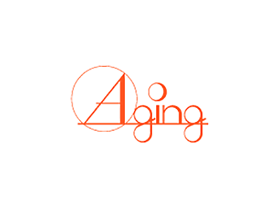 Aging エイジング