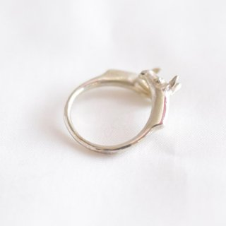 動物のリング(グアナコ)/SACHE