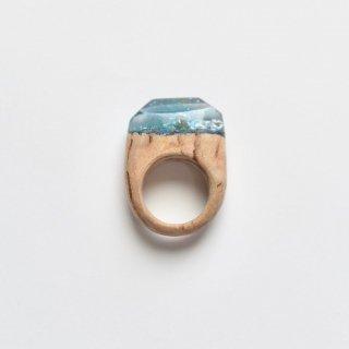 木をくりぬいた宝石のような指輪(D)/サシェミニ