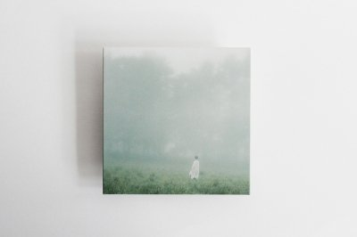 森ゆに 山の朝霧