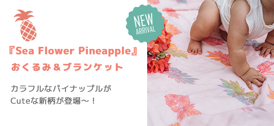 新柄『Sea Flower Pineapple』が登場!