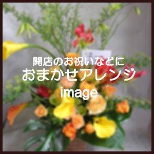 おまかせアレンジ11,000円