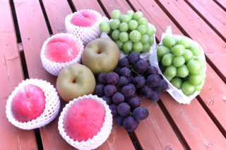 旬の果物セット(L)