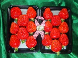 特選さちのか 1箱(280g ✖ 2パック入)福岡県 内山農園