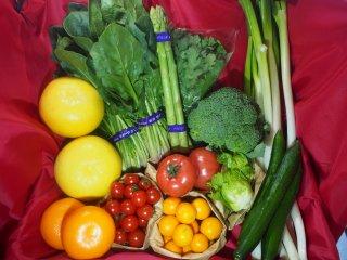 旬の野菜・果物セット(M)