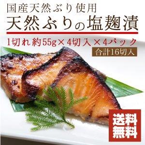 天然ぶりの塩麹漬 16切入【送料無料】