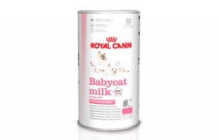 ロイヤルカナン/ 猫用ミルク / ベビーキャット ミルク