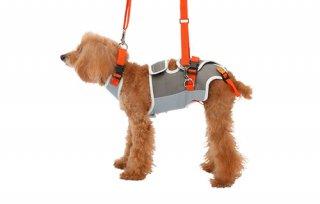歩行補助ハーネス LaLaWalk 小型犬・ダックス用グレー×オレンジ