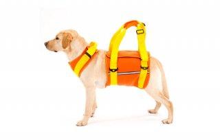 歩行補助ハーネス LaLaWalk 大型犬用 ネオプレーンオレンジ