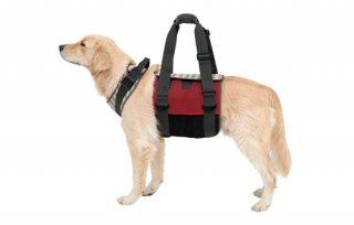 歩行補助ハーネス LaLaWalk 大型犬用 メッシュボーダー