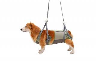 歩行補助ハーネス LaLaWalk 中型犬・コーギー用 メッシュオリーブ