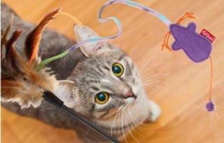 キティーティーザーフェザー&マウス/ GiGwi(キャットトーイ)