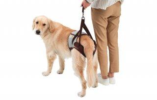 歩行補助ハーネス LaLaWalk Hip 大型犬用 マロンストライプ