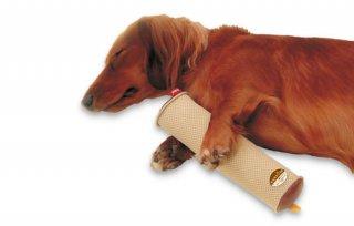 zuttone ずっとね 老犬介護用 床ずれ予防クッション スティック型 小 2個入