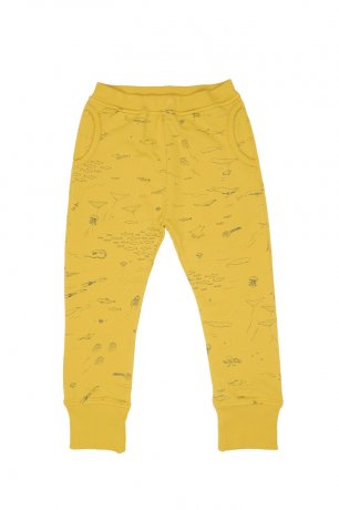 RED CARIBOU / Jogger / The Story / Mustard / AW20-BT07-24