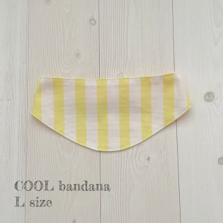 COOL bandanaイエローストライプLサイズ