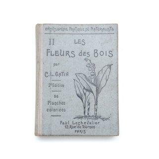 1936年 植物の本 図鑑 フランス