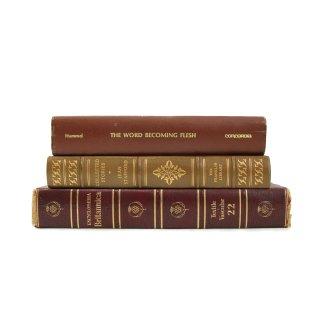 ヴィンテージ 洋書 洋古書 3冊セット レッド