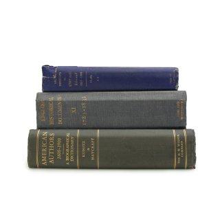 ヴィンテージ 洋書 ・ 洋古書 3冊セット ブルー