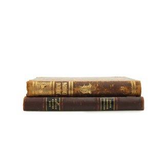 アンティーク 洋書 ・ 洋古書 2冊セット レザー ブラウン マーブル柄