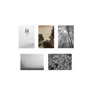 ポストカード 5枚セット  「ネイチャー」  | GENERAL SUPPLY