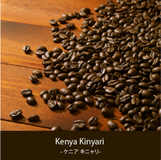 KENYA Kinyari - ケニア キニャリ -