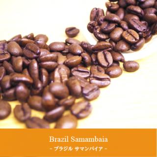 Brazil Samambaia - ブラジル サマンバイア -
