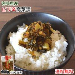 辛子高菜漬 高菜 漬物 600g(150g×4袋) 送料無料 ポッキリ お試し お取り寄せ 宮崎県産 ピリ辛たかな つけもの