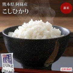 こしひかり 10kg 5kg×2 米 送料無料  令和2年産 新米 熊本県阿蘇産 地域限定米 お米 新米 こめ ひのひかり
