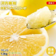 河内晩柑 文旦 みかん 訳あり 送料無料 和製グレープフルーツ 1.5kg S〜3L 2セットで1セット 3セットで3セットおまけ 晩柑 熊本県産 美生柑 グレープフルーツ
