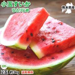 すいか 小玉すいか ひとりじめ 送料無料 秀品2玉 約3kg 熊本県産 西瓜 スイカ フルーツ