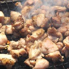 送料無料 鶏もも炭火焼き 本場宮崎名物 100g×2 国産 おつまみ 焼き鳥 地鶏 鶏