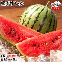 スイカ 訳あり すいか 送料無料 熊本すいか 1玉 約4.5kg〜6kg M〜L 大玉すいか 熊本県産 すいか 西瓜 フルーツ