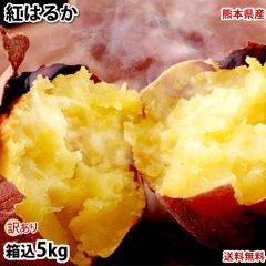紅はるか 訳あり 5kg 送料無料 さつまいも 熊本県産 サツマイモ 紅蜜芋 焼き芋 芋 いも