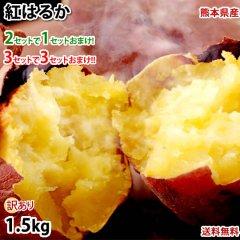 紅はるか べにはるか 訳あり 1.5kg 送料無料 2セット購入で1セットおまけ 3セット購入で3セットおまけ お取り寄せ さつまいも 熊本県産 サツマイモ 紅蜜芋 焼き芋 芋 いも