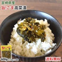 高菜漬 ごま高菜 漬物 600g(150g×4袋) 送料無料 ポッキリ お試し お取り寄せ 宮崎県産 胡麻たかな つけもの